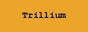 Trillium - Bradley/May/Norton